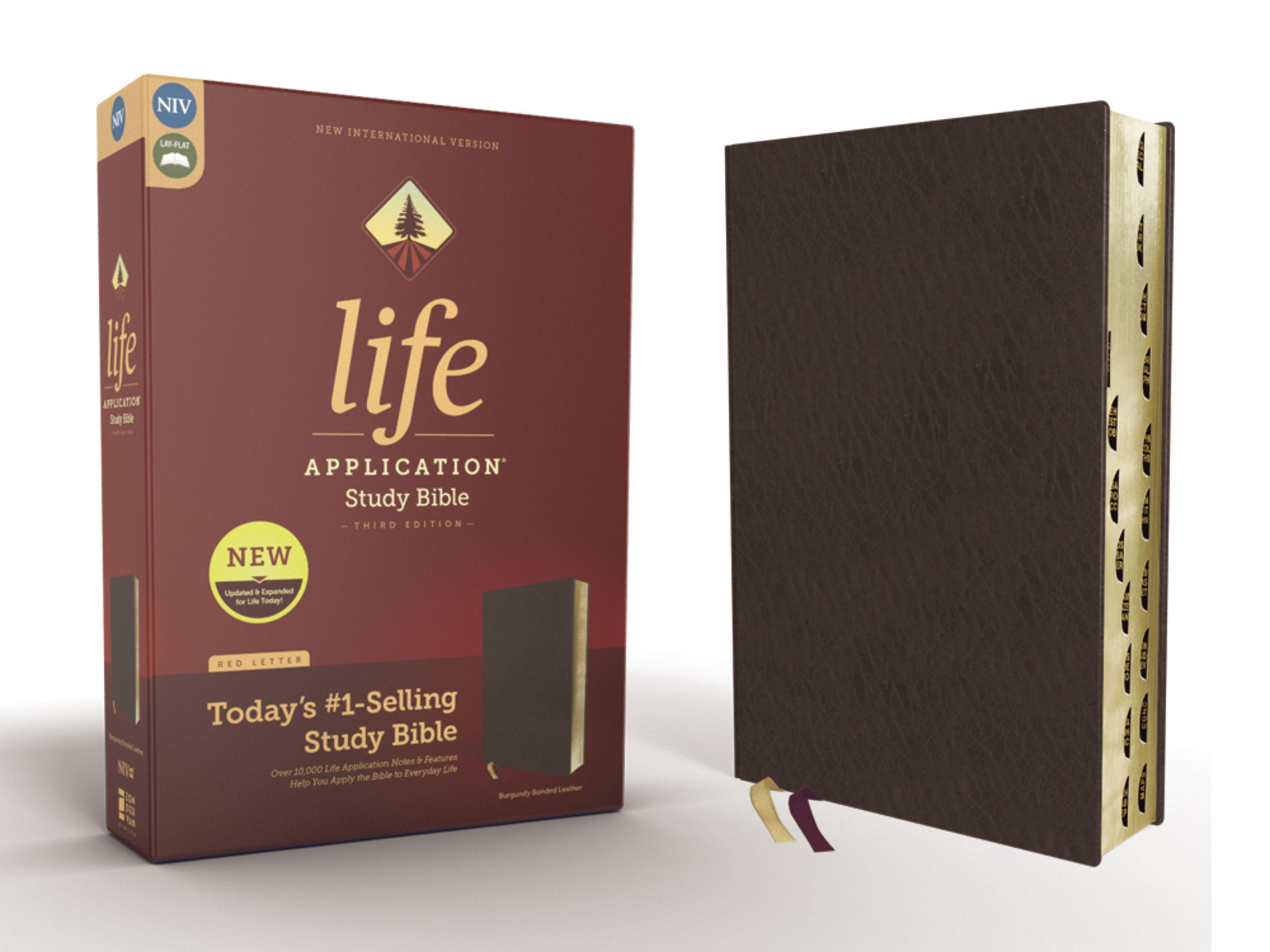Niv Study Bible Pdf