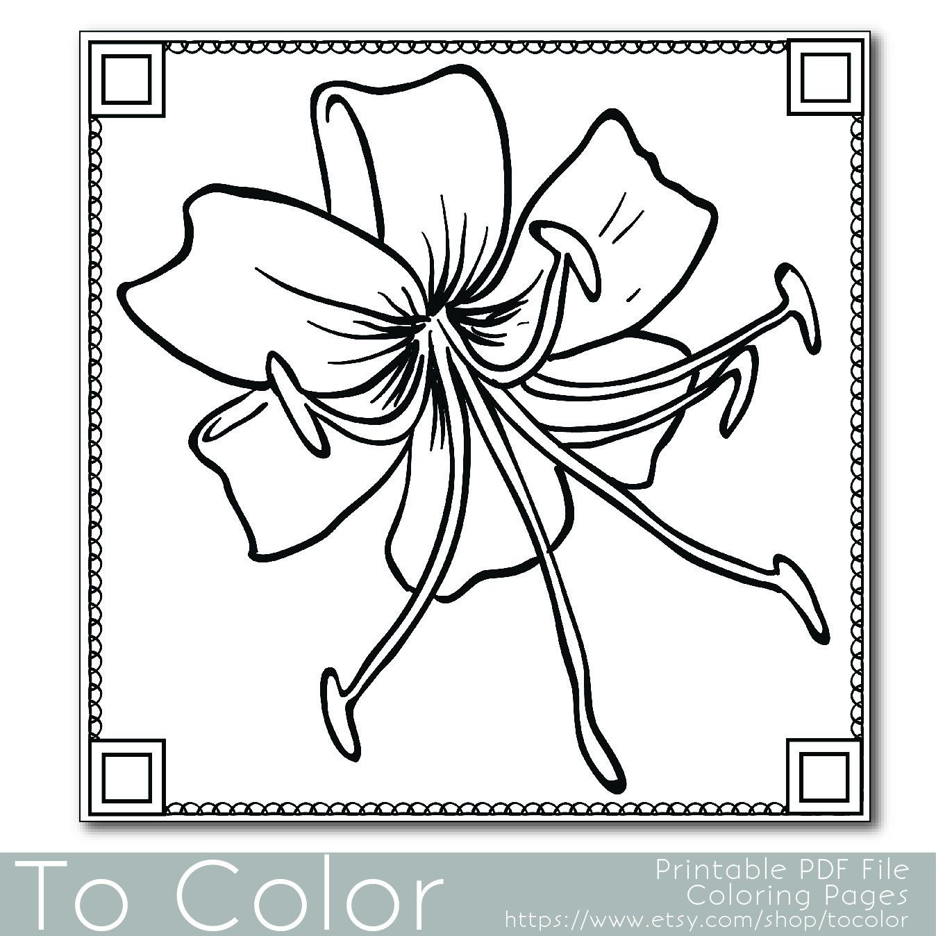 Flower Coloring Book For Adults Pdf