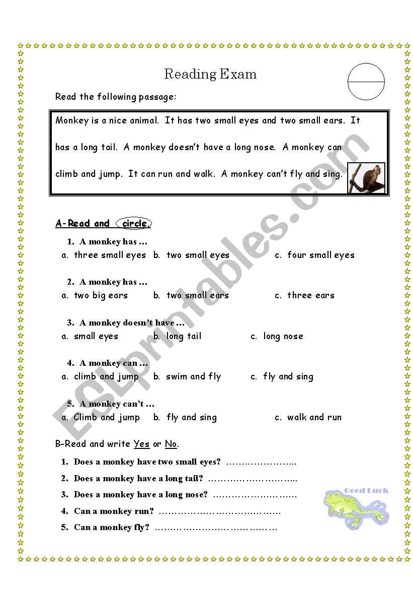 5th Grade Reading Comprehension Pdf Free