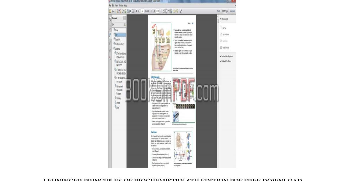 Lehninger Principles Of Biochemistry Pdf Drive