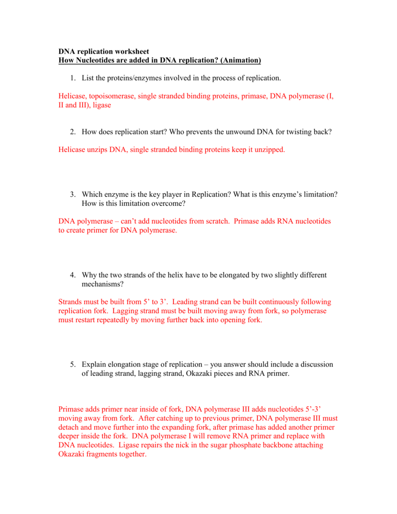 Biology Dna Replication Worksheet Answer Key Pdf