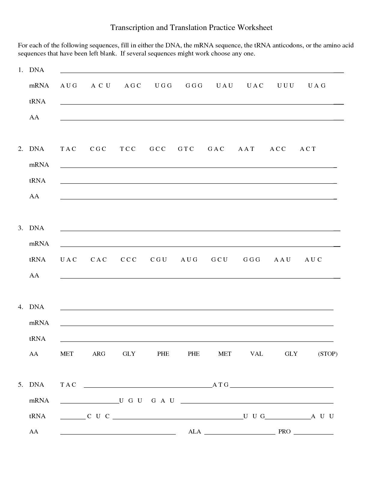 Dna Replication Worksheet Answer Key Pdf Chapter 17 2