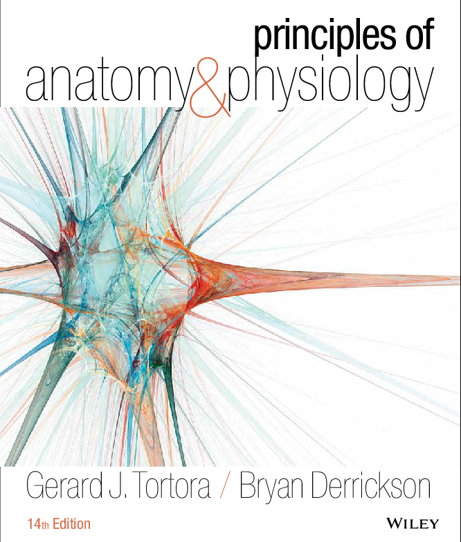 Anatomy And Physiology Textbook Pdf Free Download
