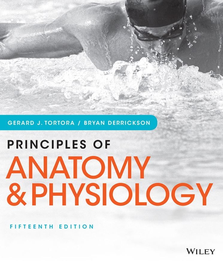 Anatomy And Physiology Textbook Pdf Tortora