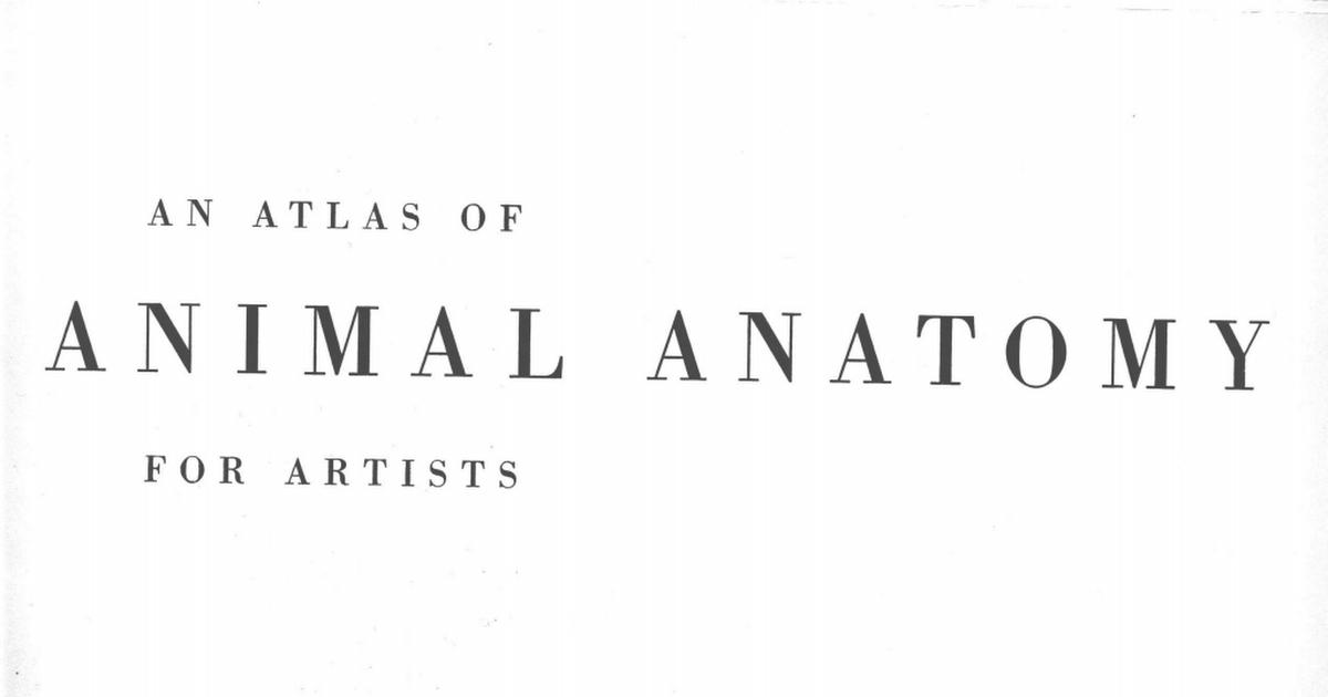 Animal Anatomy For Artists Pdf