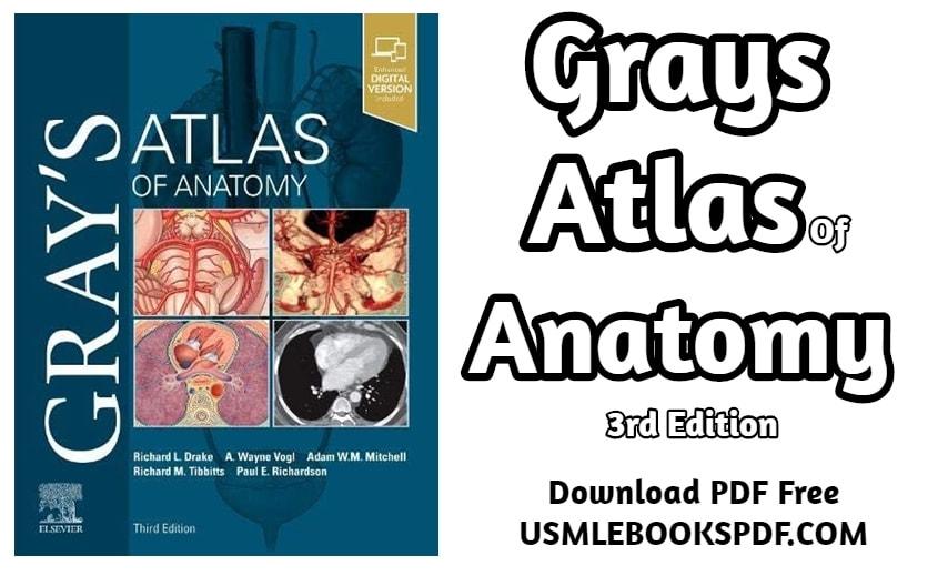 Grays Anatomy Pdf