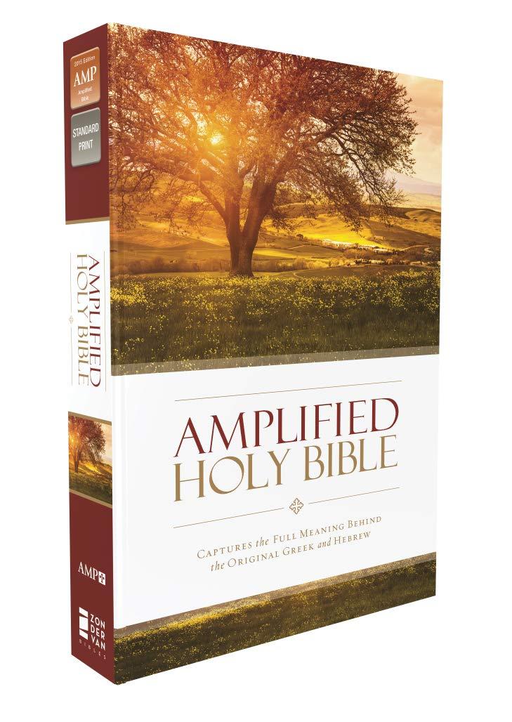 Amplified Bible Pdf
