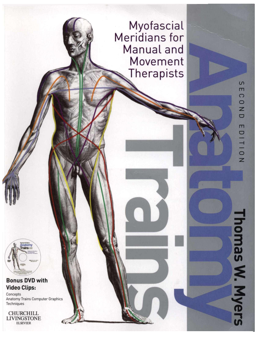 Anatomy Trains Pdf Thomas Myers