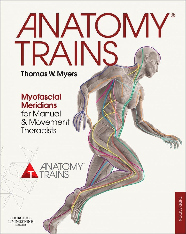 Anatomy Trains Posters Pdf