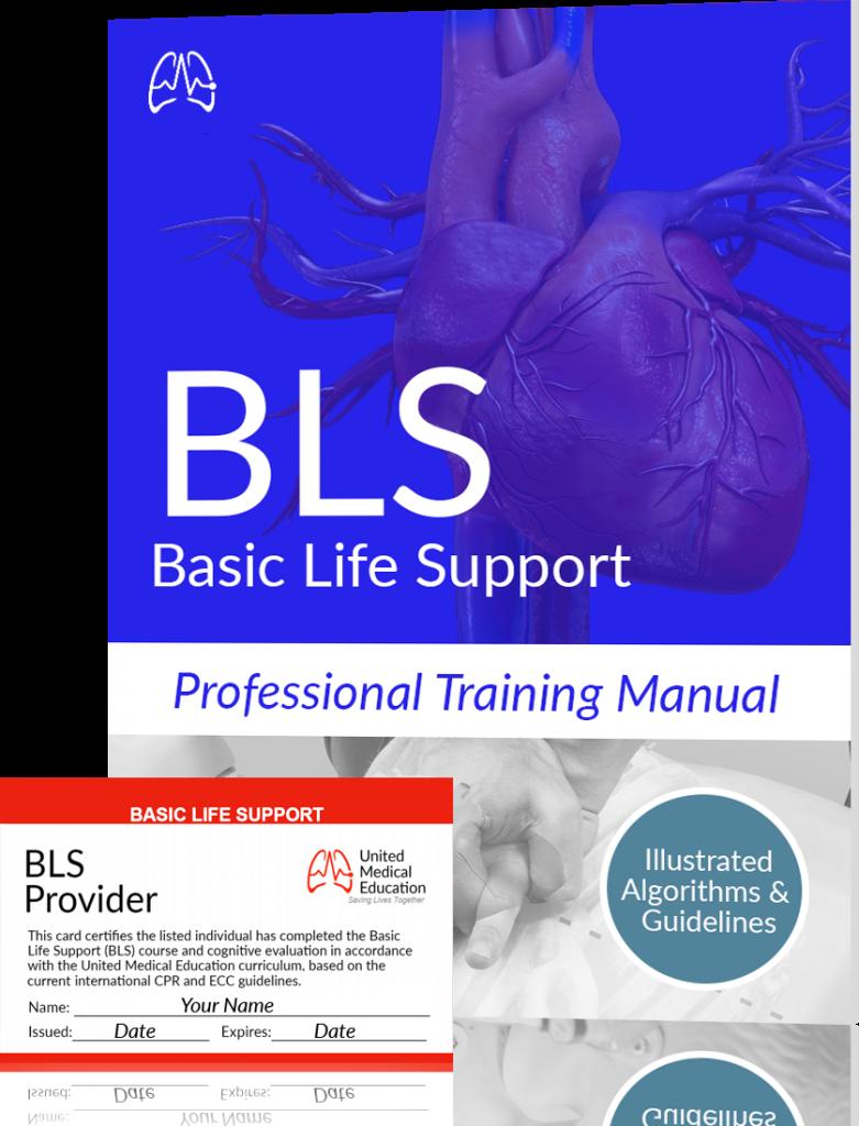 Basic Life Support Chart Pdf
