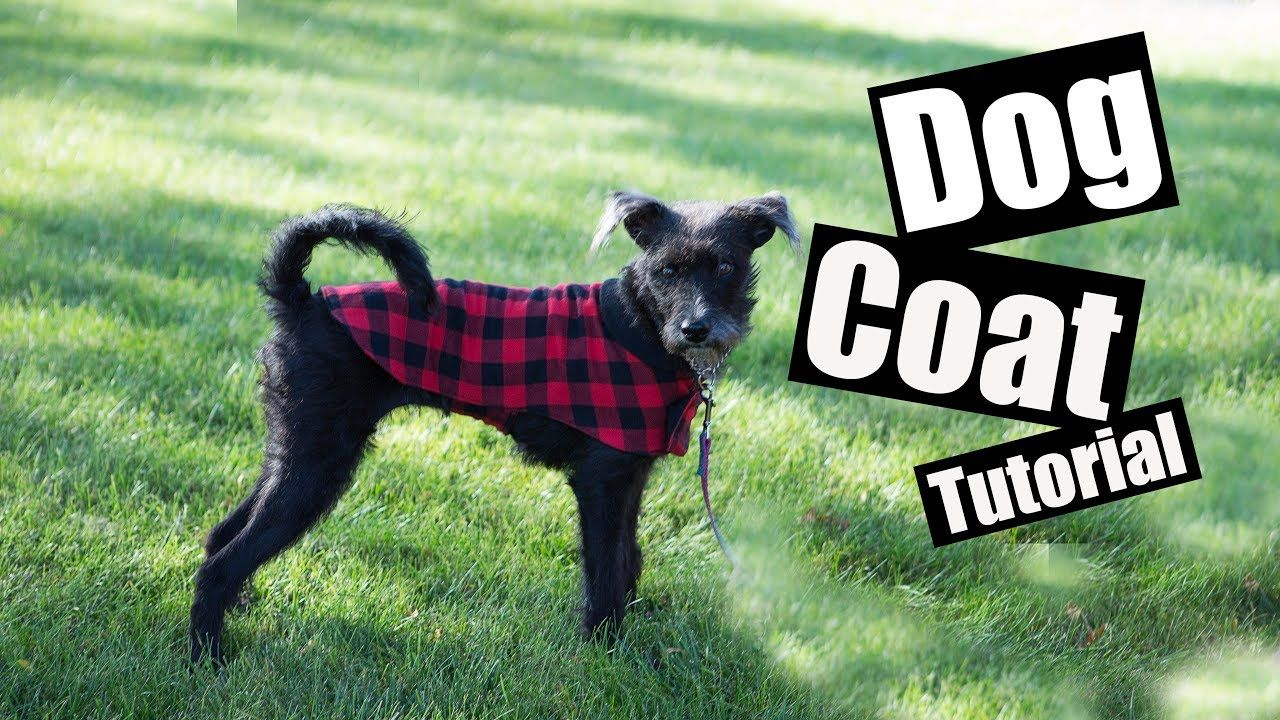 Dog Coat Pattern Pdf Free