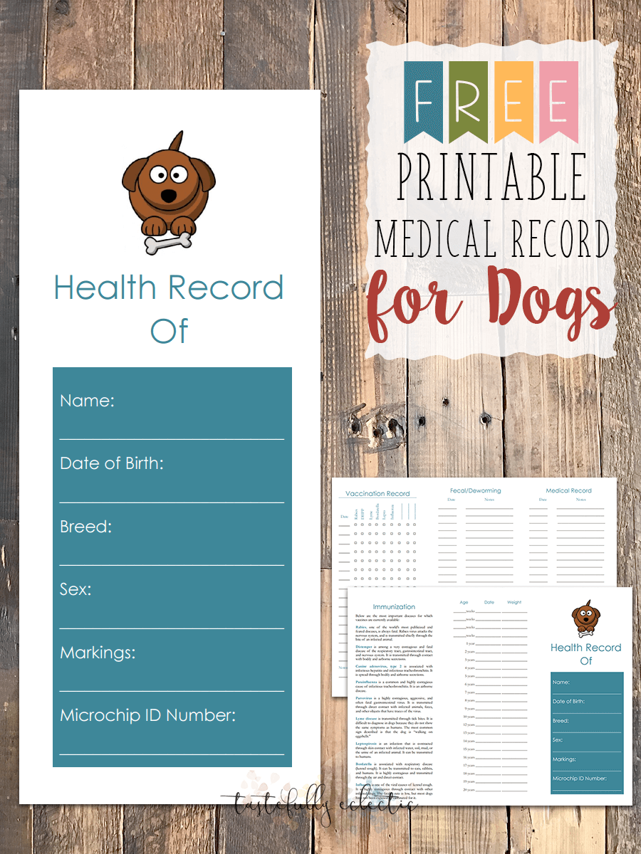 Dog Vaccination Record Printable Pdf Free