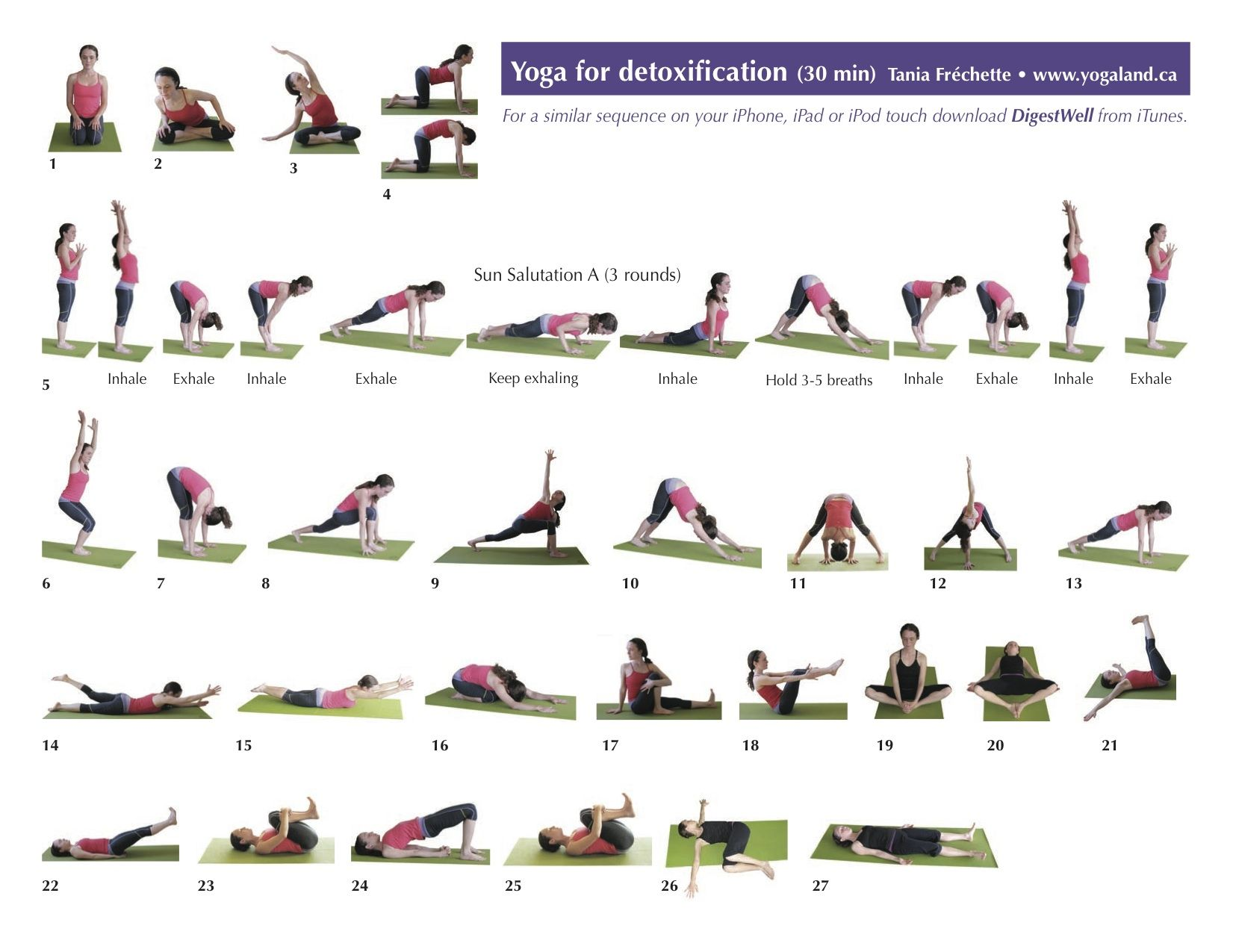 Gentle Yoga Flow Sequence Pdf
