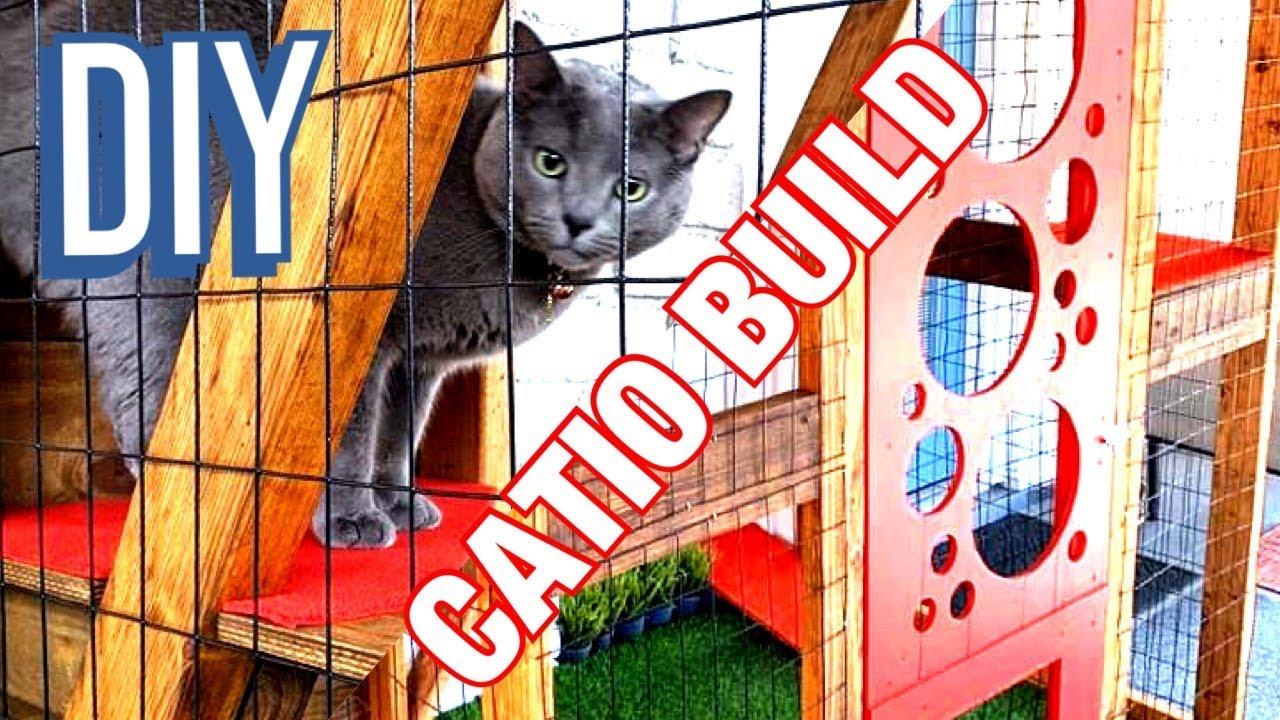 Pdf Diy Catio Plans Free