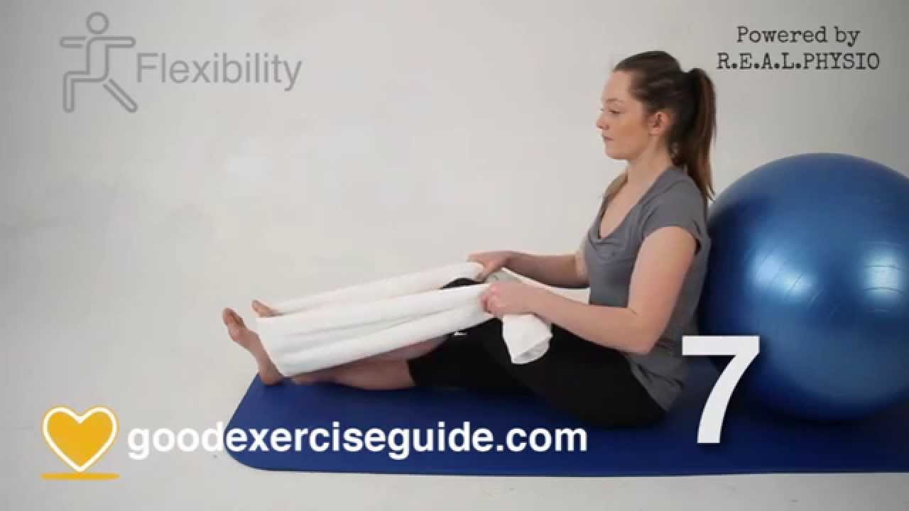 Physical Therapy Knee Exercises For Osteoarthritis Pdf