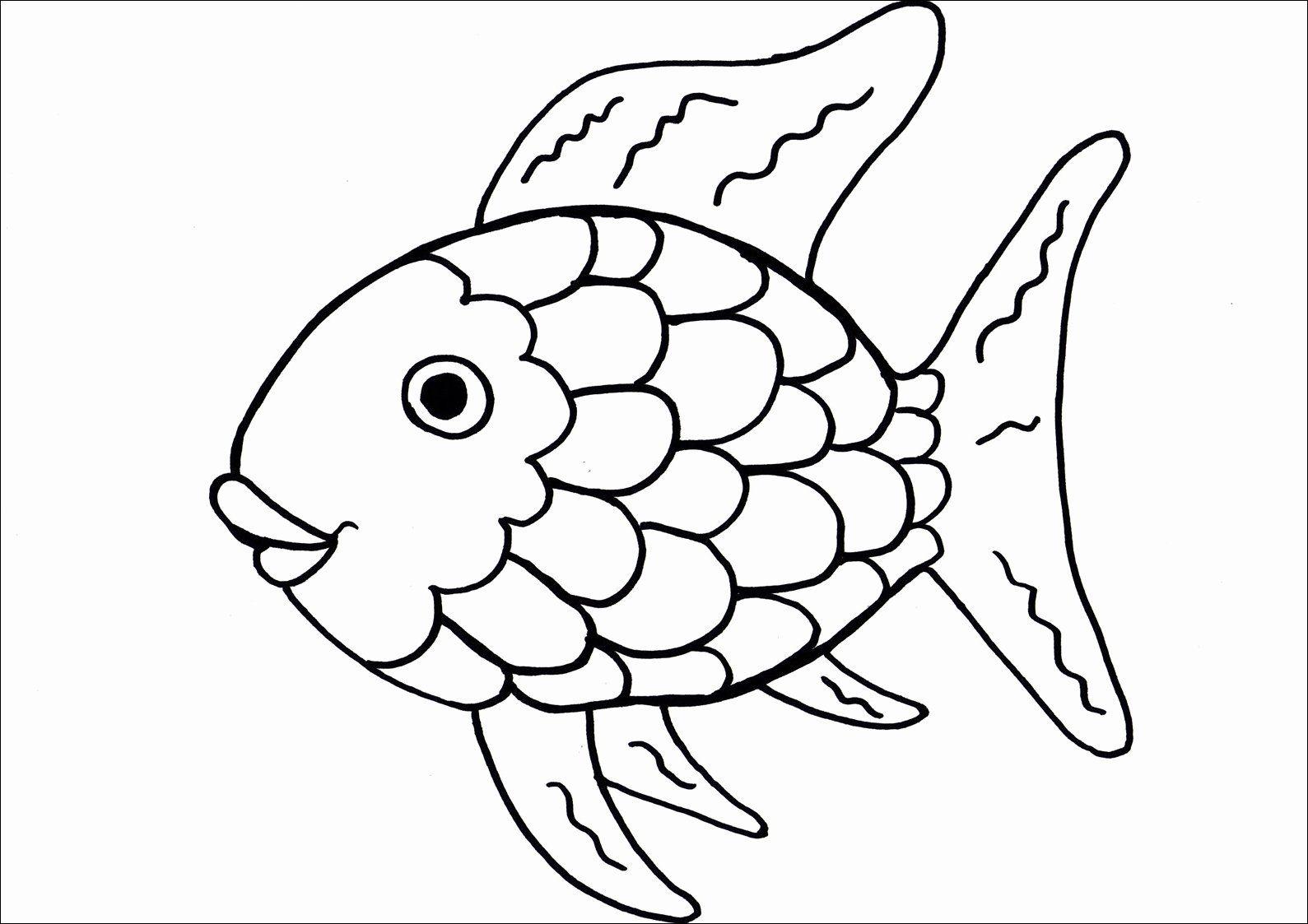 Rainbow Fish Book Pdf
