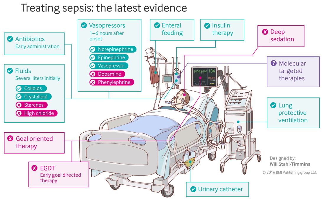 2019 Pdf Surviving Sepsis Guidelines 2019