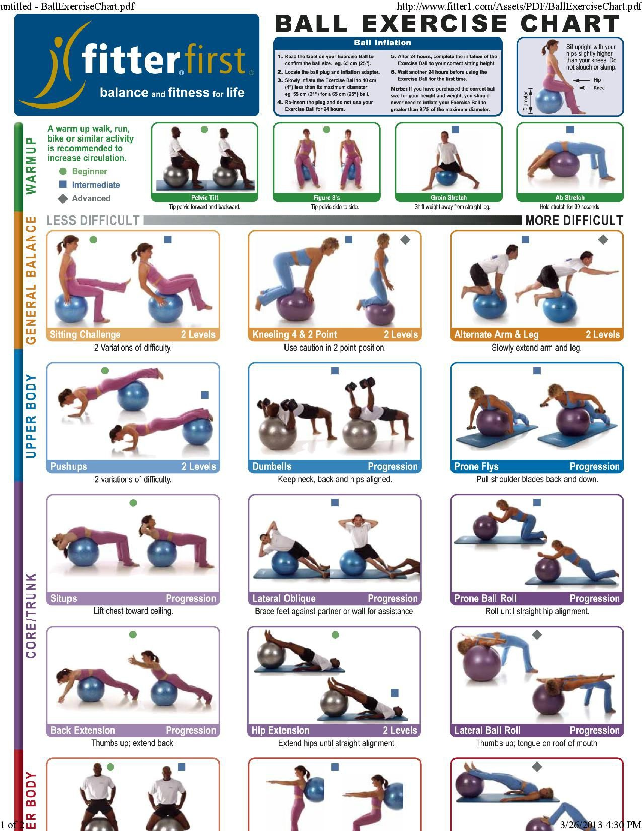 Beginner Bosu Ball Exercises Pdf