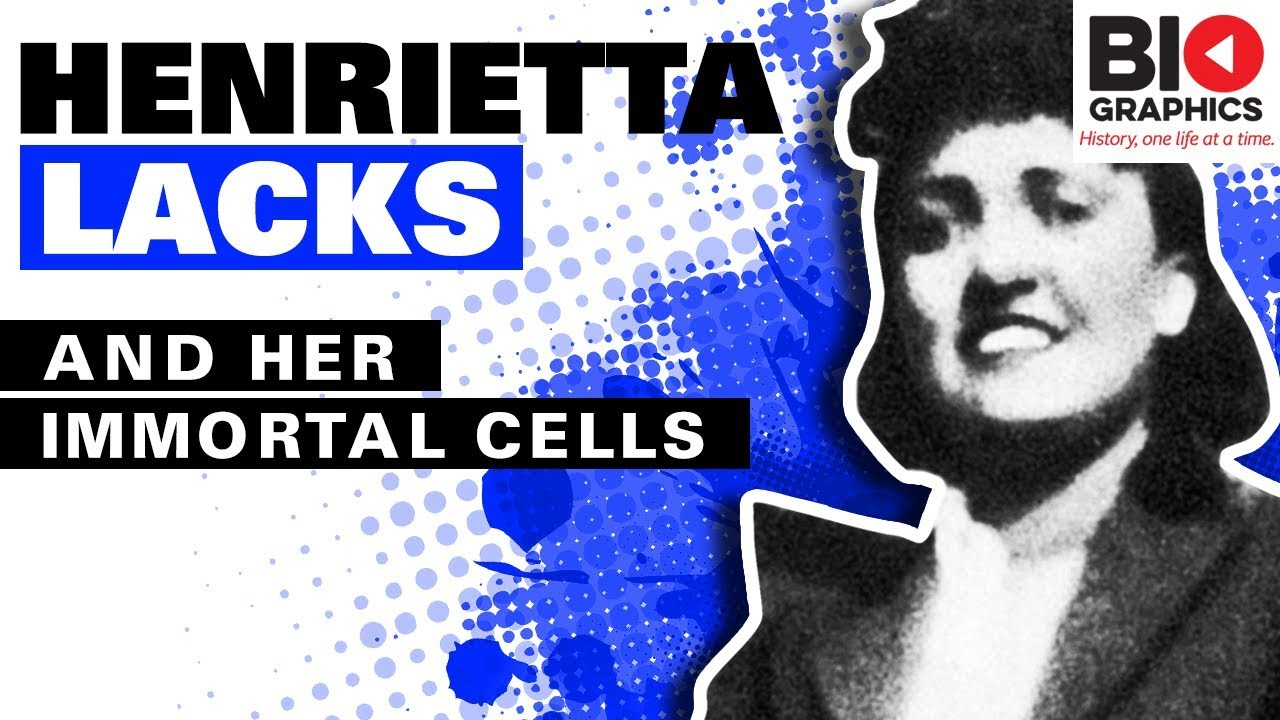 Henrietta Lacks Pdf Book
