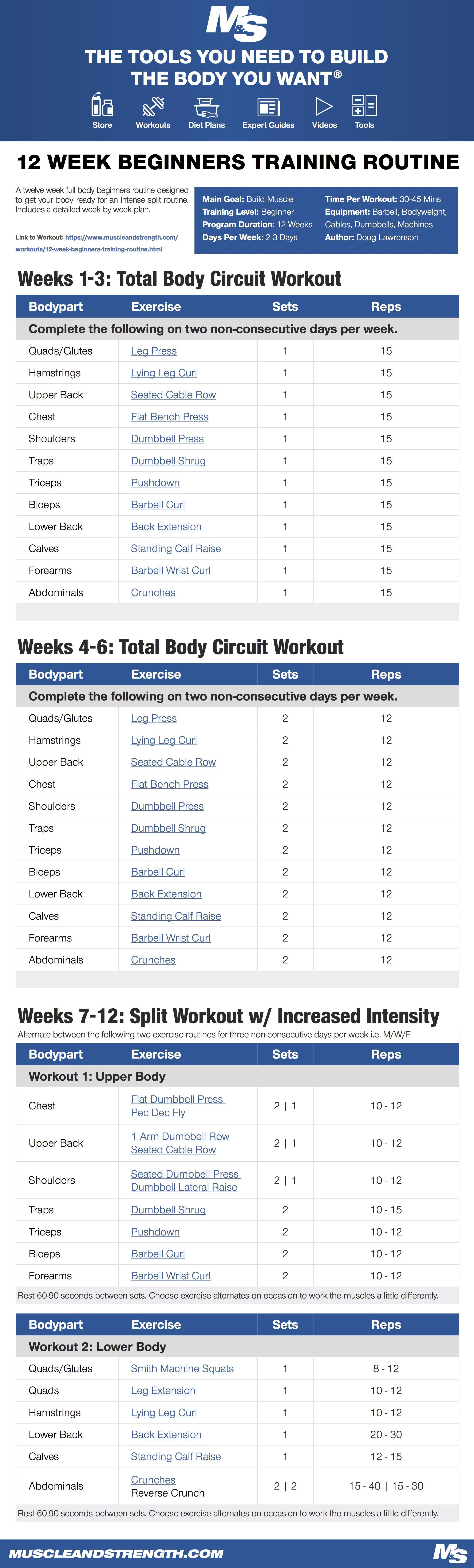Weekly Arnold Schwarzenegger Workout Routine Pdf