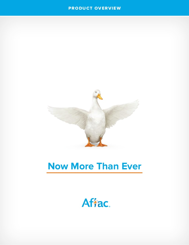 Aflac Accident Policy Pdf