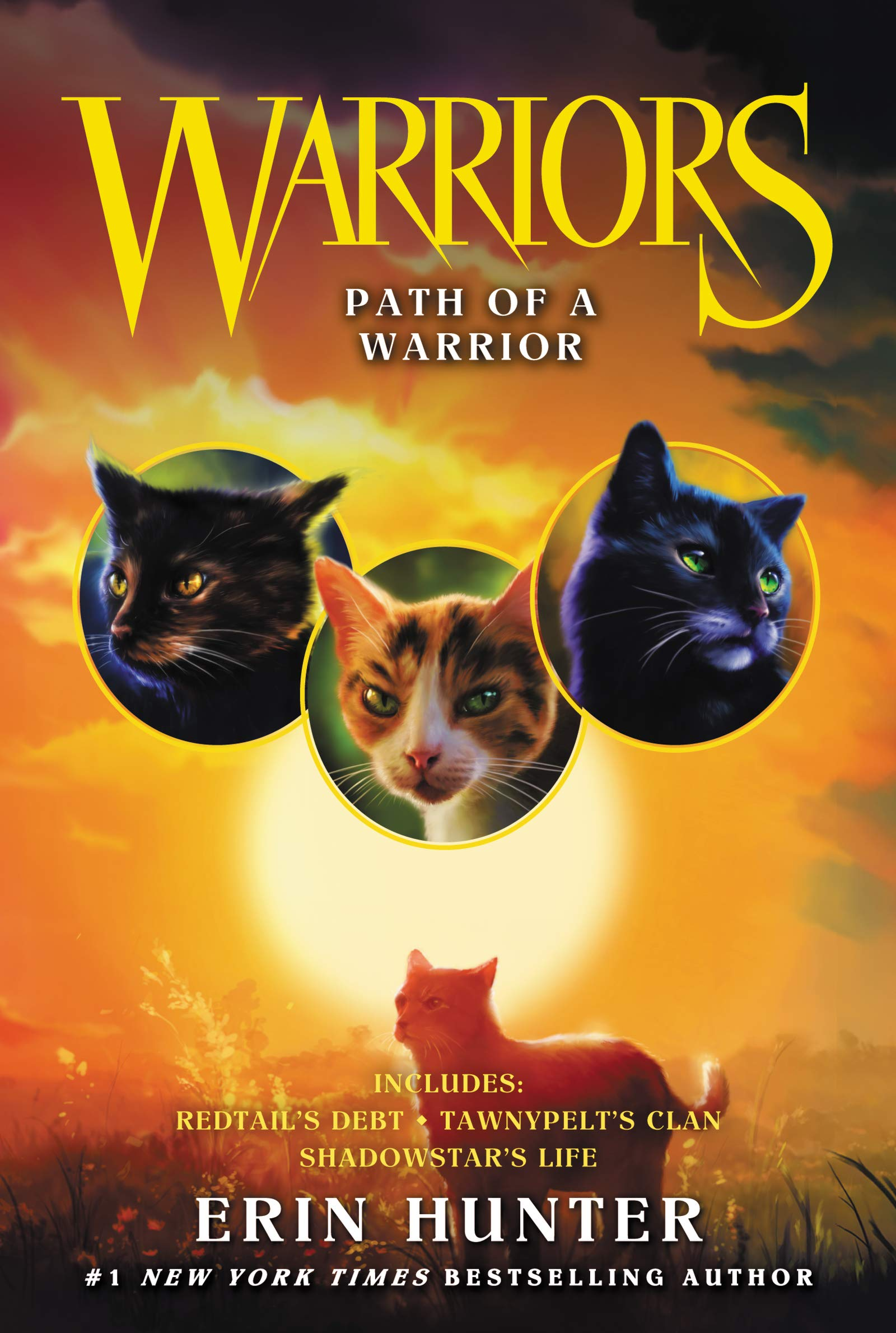 Warrior Cats Books Online Free Pdf