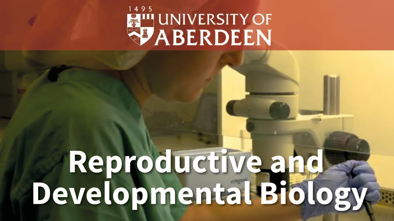 Developmental Biology 11th Edition Pdf