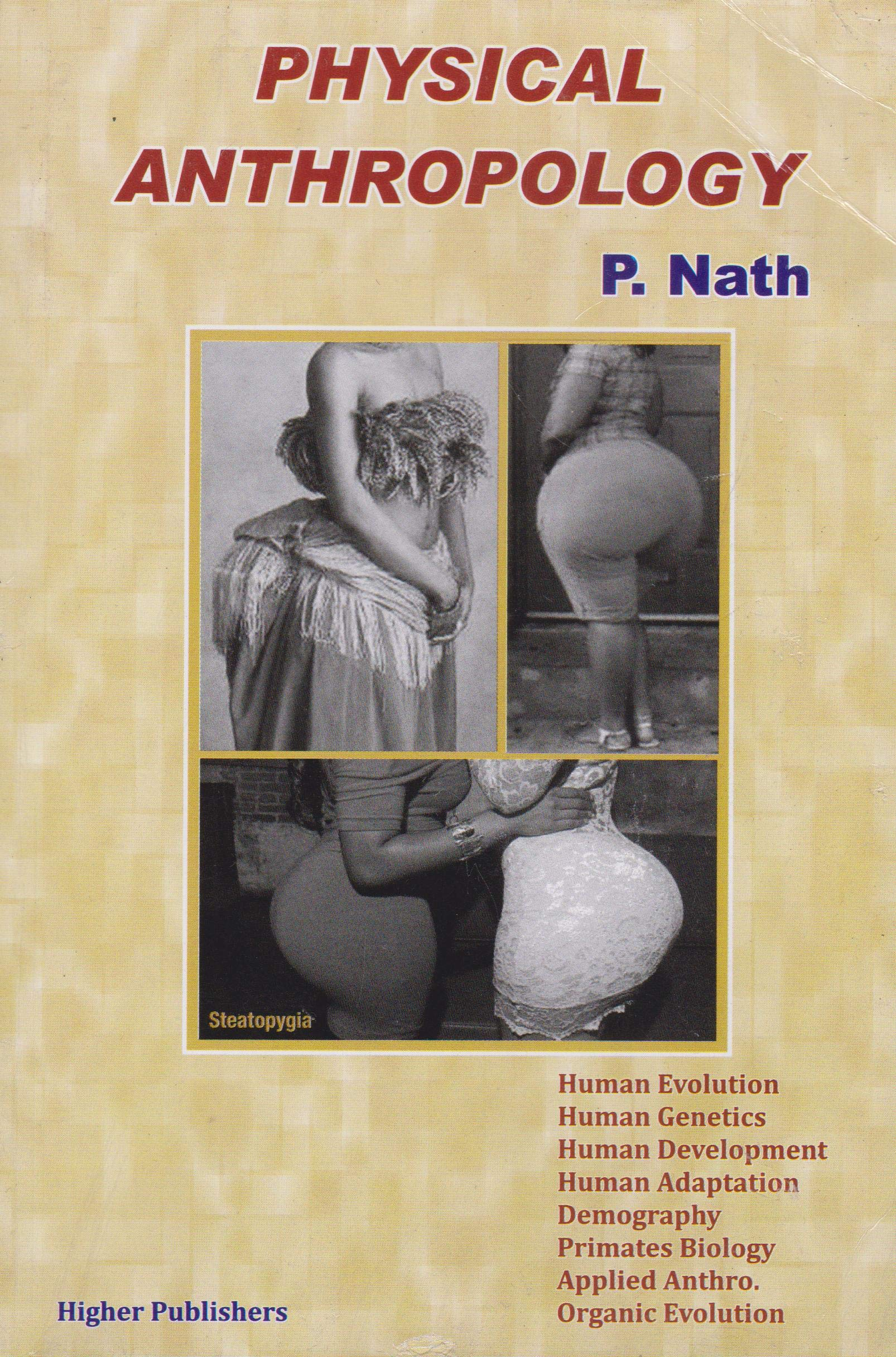 Essentials Of Physical Anthropology Pdf Free