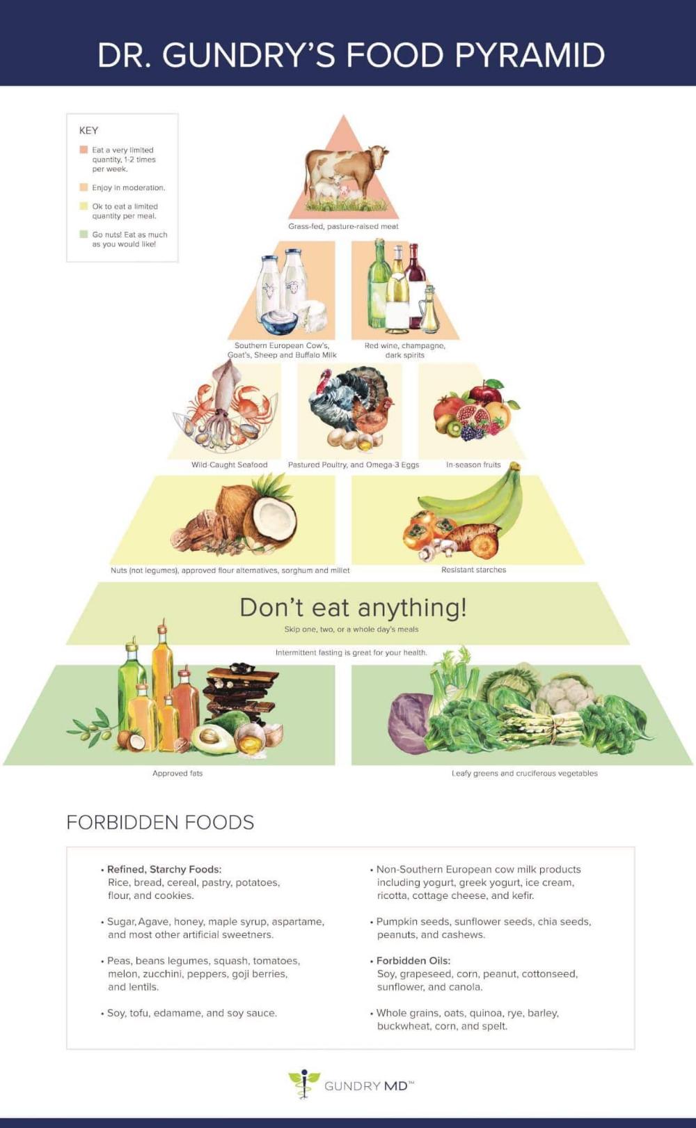 The Plant Paradox Cookbook Pdf Free Download