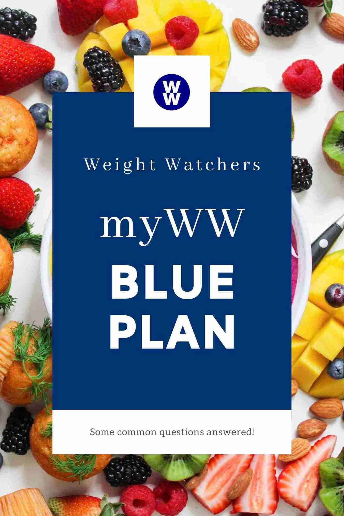 Weight Watchers Freestyle Plan Pdf