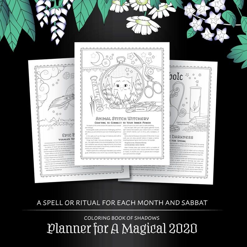 Coloring Book Of Shadows Planner For A Magical 2020 Pdf