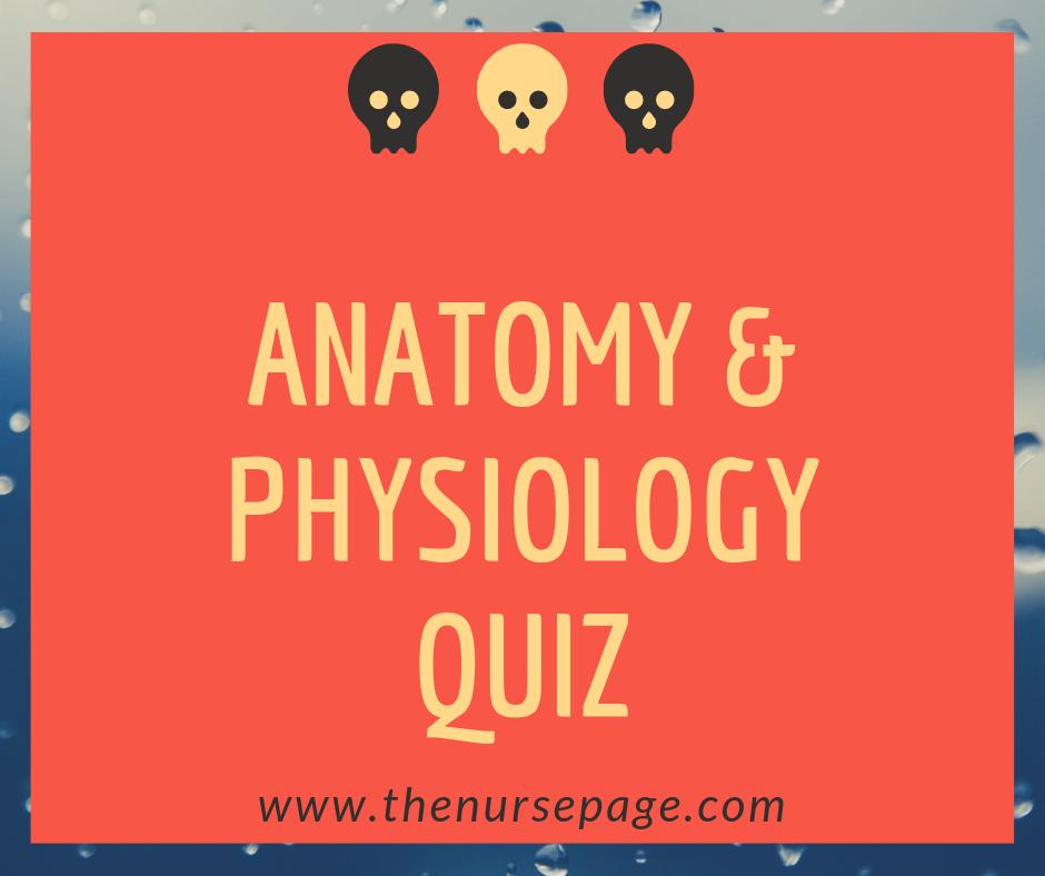 Fundamentals Of Anatomy And Physiology Pdf Reddit