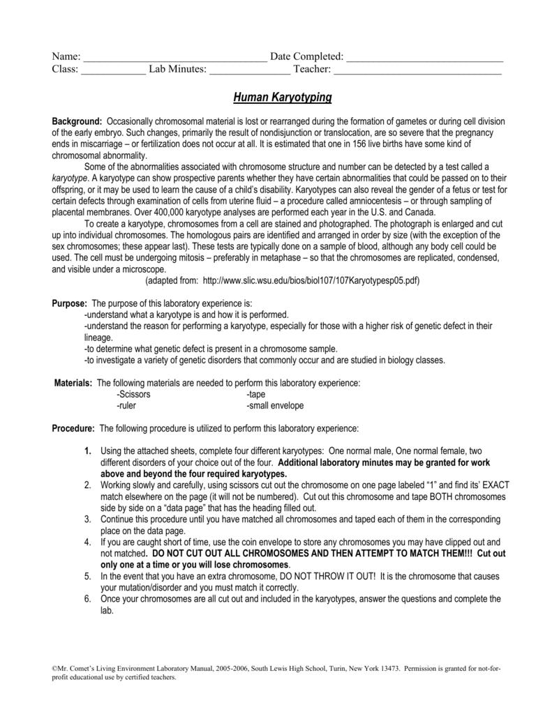 Karyotyping Activity Answer Key Pdf