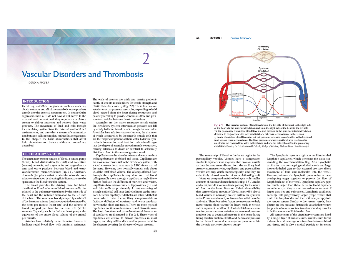 Pathologic Basis Of Veterinary Disease Pdf