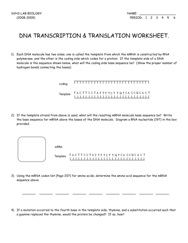 Rna Worksheet Pdf Answer Key